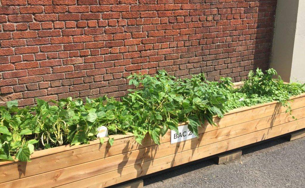 ACT-Le-jardinage-courtoisie-Facebook-1
